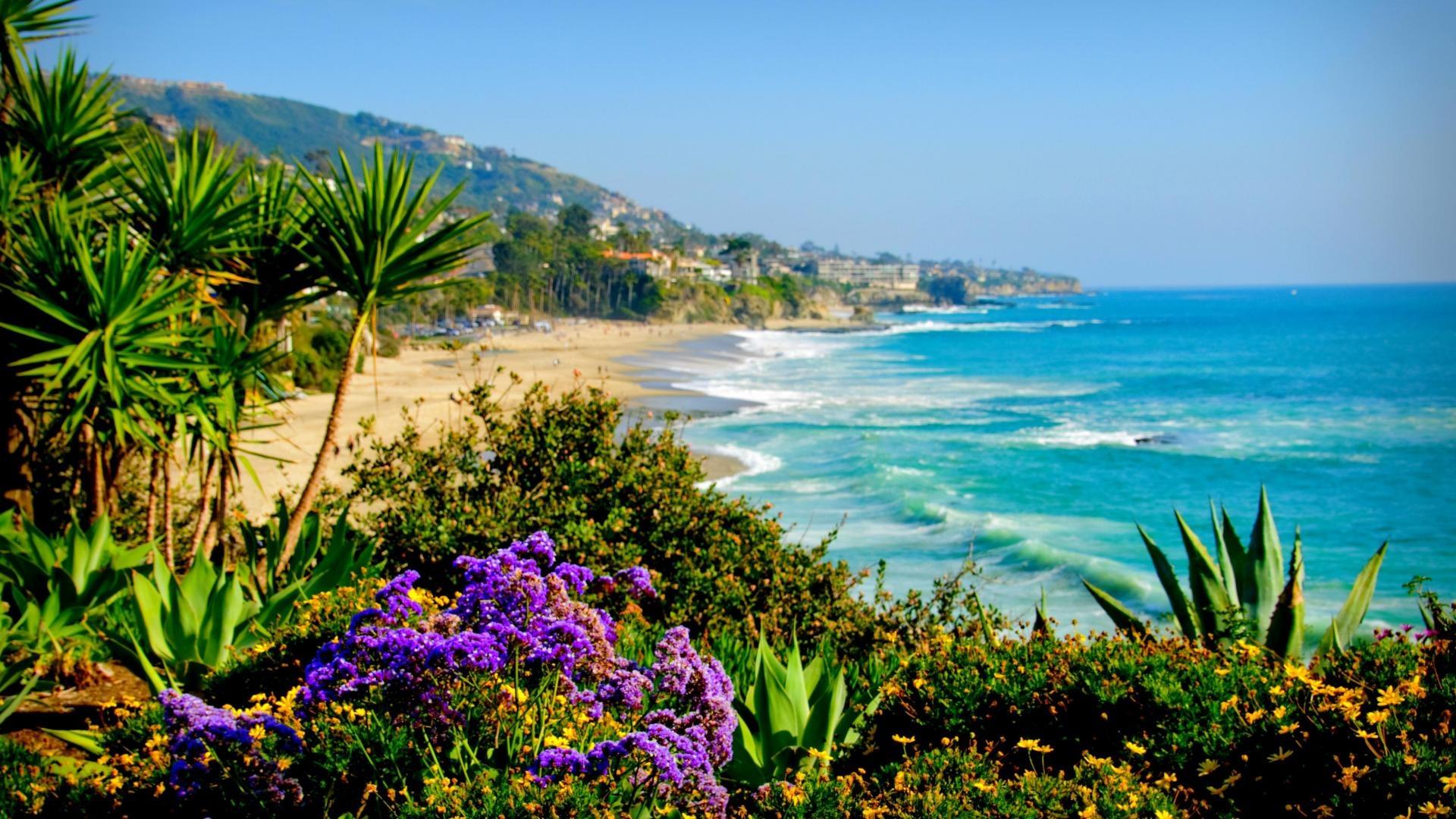 Tropical Island Beach Ambience Sound: Orange County, CA - Rob Giem